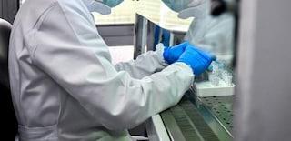 """Vaccino anti-Covid, per l'Oms """"non ci sarà diffusione di massa fino a metà del 2021"""""""