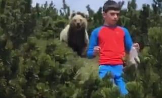 """L'incontro del piccolo Alessandro con l'orso: """"Non avevo paura. Ora spero di rivederlo"""""""
