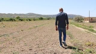 """Agricoltura in ginocchio tra danni e furti in tempi di emergenza: """"Nessun aiuto, ma andiamo avanti"""""""