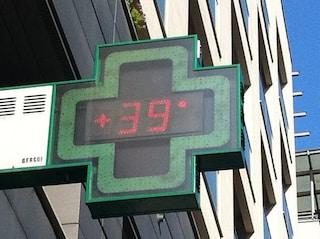 A Palermo registrati 39,4 gradi, record storico in Italia: mai temperatura così alta a maggio