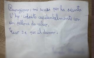 Rompe la pianta del vicino giocando col pallone, 11enne lascia biglietto di scuse e 5 euro