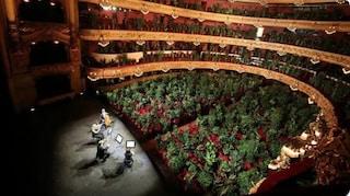 Spagna, il teatro d'opera riapre dopo il lockdown con un pubblico di 2000 piante