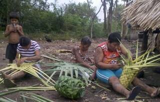 """Una tribù di Arara la """"più contagiata"""" del Brasile: """"Siamo sull'orlo del disastro"""""""
