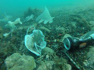 """I rifiuti dell'emergenza Covid nei mari: """"Presto più mascherine che meduse nel Mediterraneo"""""""