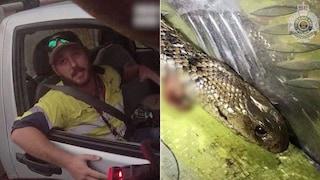 """""""Pensavo di avere solo pochi secondi di vita"""", uccide un serpente e guida ad oltre 120 km/h"""