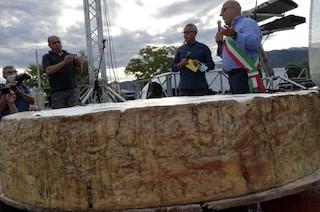 Il pecorino più grande del mondo è sardo: guiness world record per la forma da 600 chili