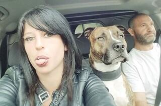 """Elisa sbranata dai cani in Francia mentre passeggia, il compagno: """"Non è stato il suo cane"""""""