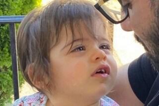 Bimba di 1 anno sbranata dal pitbull dei nonni durante un pranzo di famiglia