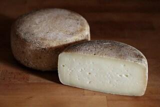 Presenza di Escherichia Coli, il Ministero richiama formaggio pecorino. L'allerta alimentare