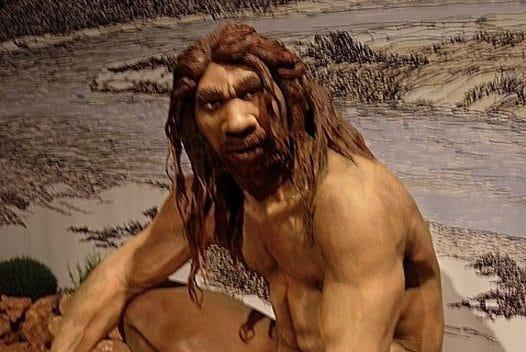 Ricostruzione dell'aspetto di un Homo heidelbergensis