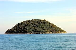 Venduta per 10 milioni di euro l'Isola Gallinara in Liguria: l'ha acquistata un magnate ucraino