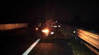 Cinghiale piomba sull'autostrada A4: cinque feriti, grave una donna di 50 anni