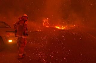 La California brucia: record di incendi negli ultimi 30 anni, distrutti 800mila ettari di foresta