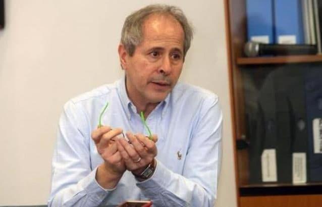 Il virologo Andrea Crisanti
