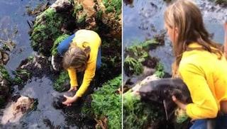 Bambina di 11 anni salva uno squalo intrappolato tra le rocce: il video della mamma è virale