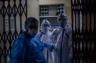 India, allerta per il virus Nipah: trasmesso dai pipistrelli, ha ucciso un bambino di 12 anni