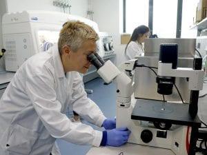 Fuga dei cervelli: milioni di finanziamenti Ue a 47 ricercatori italiani, ma 30 lavorano all'estero
