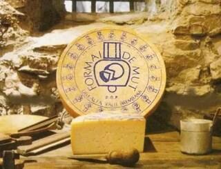 """Presenza di Listeria, Ministero della salute annuncia richiamo di formaggio: """"Non mangiatelo"""""""