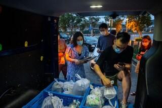 Cina, tracce di coronavirus su 79 surgelati: sanificati 19 milioni di prodotti alle dogane