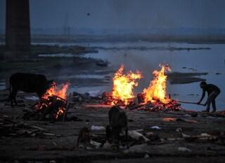 """India, scoperti altri 50 corpi decomposti sulle rive del Gange: """"Non sappiamo se sono vittime Covid"""""""