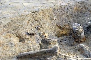 Bologna, trovate ossa umane nella cantina di un edificio occupato