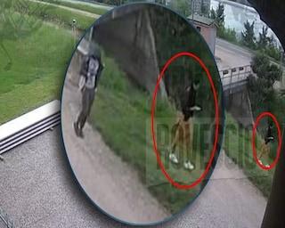 Le ultime ore di Saman in un video mentre cammina con il fratello verso casa dello zio