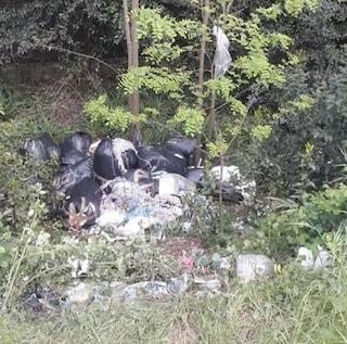 """Prato, smaltimento illecito di rifiuti, testimoni a Fanpage: """"Centinaia di sacchi abbandonati nei boschi"""""""