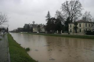 Padova, si getta nel fiume per fuggire alla polizia dopo un tentato furto e muore annegato