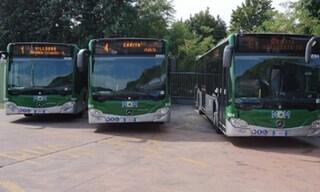 Treviso, dimentica sul bus borsa con 18mila euro: l'autista la ritrova, ricompensa da 50 euro