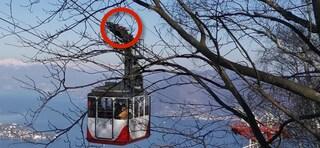 Funivia Mottarone, forchettoni sulla cabina anche il 28 febbraio: il video esclusivo di Fanpage.it