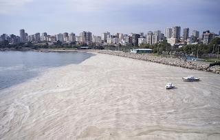 Perché le coste della Turchia sono invase dalla mucillagine marina