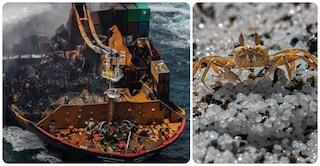 Sri Lanka, incendio su nave cargo: tonnellate di microplastiche in mare, è un disastro ambientale