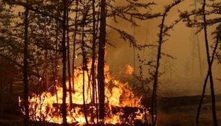 La Siberia divorata dagli incendi: a fuoco più di due milioni di ettari di bosco