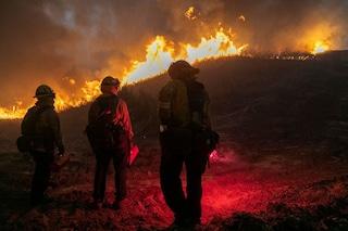 Allarme incendi California per caldo record: temperature fino a 53 gradi, distrutte decine di case