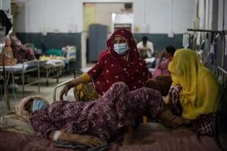 In India 4.200 persone sono morte a causa del fungo nero che colpisce i pazienti Covid