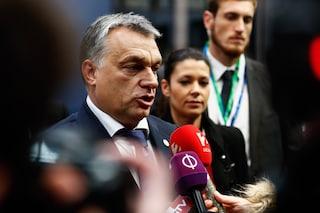 Parlamento Ue approva risoluzione contro la legge anti-Lgbtq+ ungherese, Lega e FdI votano contro