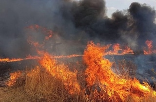 Imperia, bruciano sterpaglie ma divampa l'incendio: lei muore tra le fiamme, il marito è grave
