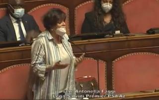"""La senatrice leghista: """"Se Dio ci avesse voluto diversi, ci avrebbe lasciato cambiare sesso da soli"""""""