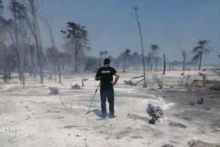 Spento l'incendio nella pineta di Sovereto: l'oasi naturale è ora una distesa di cenere