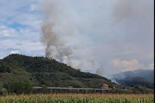Versilia, un incendio devasta gli oliveti di Massarosa: chiusa arteria autostradale di Lucca-Viareggio
