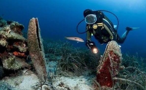 Alghero, 4 turisti spagnoli rubano una nacchera di mare, ora rischiano 3 mila euro di multa a testa