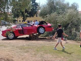 Prato, 70enne si fa filmare mentre sgomma sulla Ferrari da 135mila euro: si schianta contro un ulivo