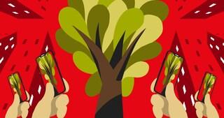 Il bosco diffuso è sbarcato in città (e sui social)