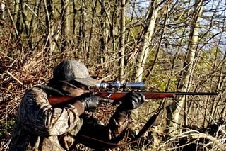 Il referendum per abolire la caccia in Italia che ha raccolto 200mila firme
