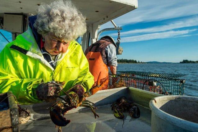 USA, a 101 anni Virginia lavora ancora come pescatrice di aragoste