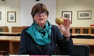 Silvana De Mari sospesa dall'Ordine dei Medici: leader no vax, diceva che i gay sono malati