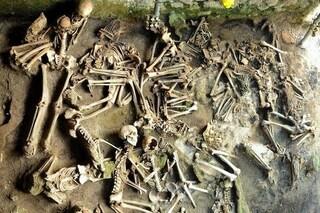 Cosa si mangiava a Ercolano prima dell'eruzione del Vesuvio: lo rivela una nuova ricerca