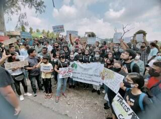 """""""Diamo un taglio all'avidità, non al verde"""", in India abbracciano alberi per non farli abbattere"""
