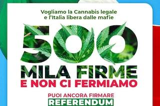Referendum sulla cannabis legale, raccolte 500mila firme in una settimana