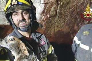 Scavano a mani nude per salvare Mara: la cucciola di beagle era rimasta incastrata sotto un masso